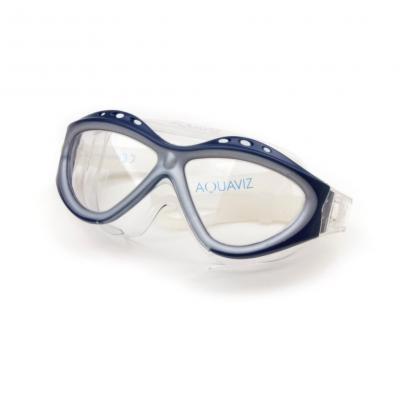 Lunettes de Natation Aquavisio Bleu/Argent