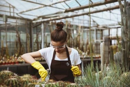 Lunettes de protection jardinage